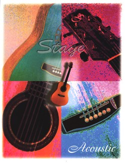 Stage Instruments Acoustic Brochure